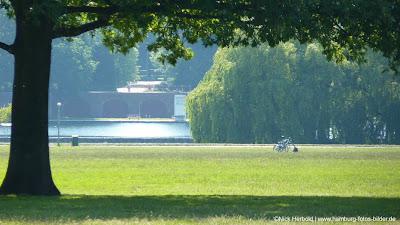 Stadtpark Hamburg, Wiese, Baum, Stadtparksee