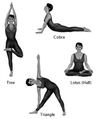 do yoga exercises