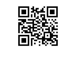 Pin BB Barcode