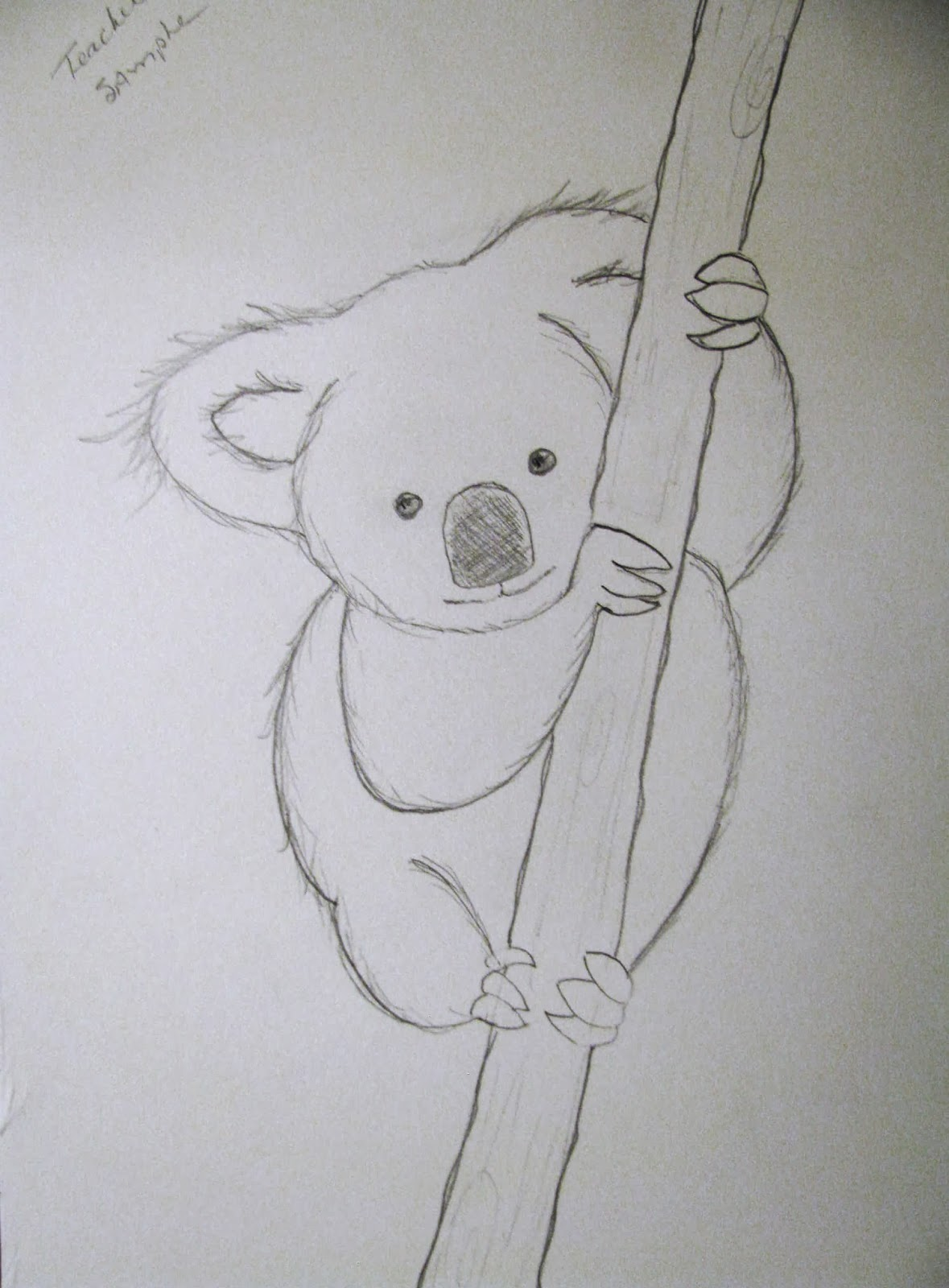 Line Drawing Koala : Plateau art studio koalas