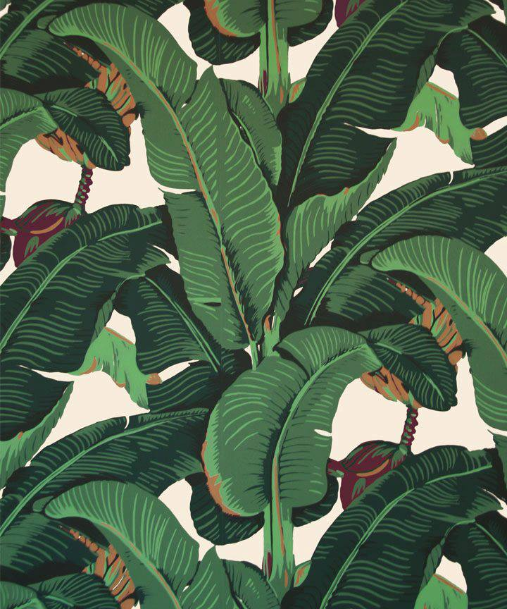 stylebeat it 39 s a jungle out there kate spade 39 s