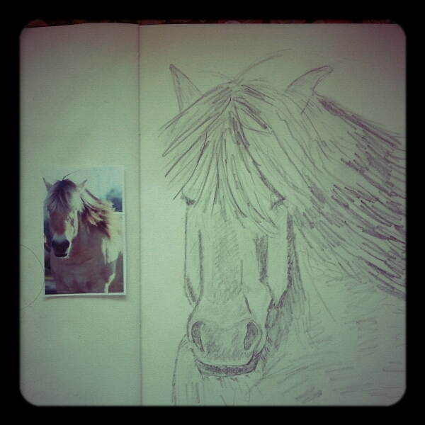 Caatje 39 S Artsy Stuff So Um I Tried To Draw A Horse
