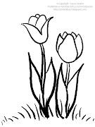 Dibujo de tulipanes para imprimir y colorear! (dibujo de tulipanes para colorear)