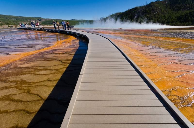 Grand Prismatic Spring in Yellowstone National Park  United States