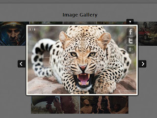 ClassyBox : Complex jQuery LightBox Alternative