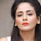 Parul Yadav Photos at South Scope Calendar 2014 Launch Photos 2528117%2529
