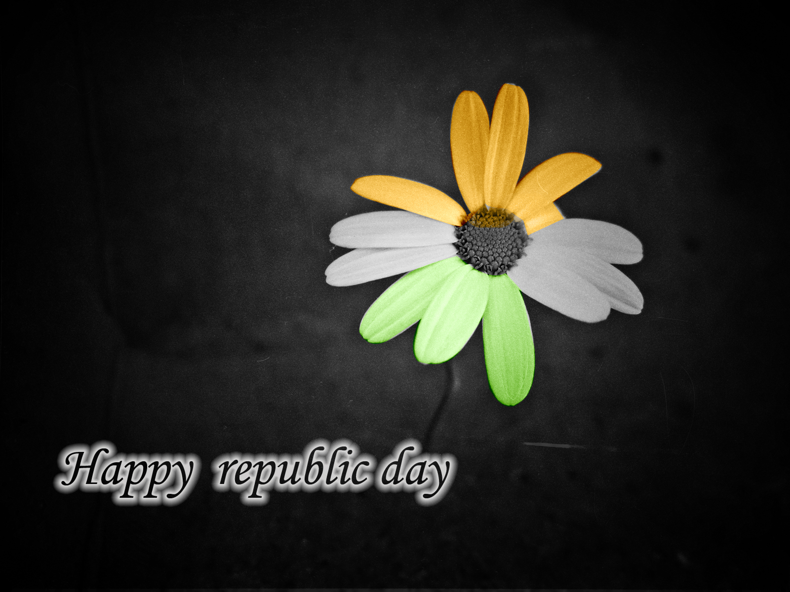 http://4.bp.blogspot.com/--HzbiixXj9g/UP4iqC0teBI/AAAAAAAAISQ/KbspZMSsR1o/s1600/happy+republic+day+wallpaper.jpg