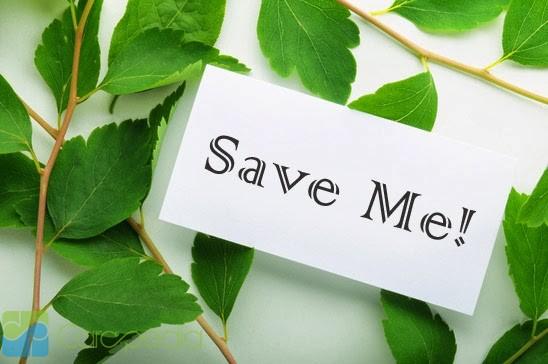 Sejumlah Lembaga Deklarasikan Gerakan Menyelamatkan Bumi di Senayan