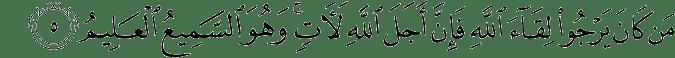 Surat Al 'Ankabut Ayat 5