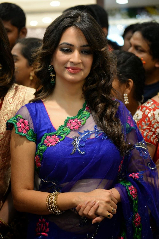 beautiful images  kriti kharbanda glamorous in blue saree