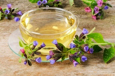 how to make lungwort tea