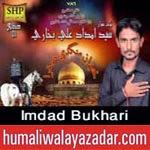 http://audionohay.blogspot.com/2014/10/imdad-bukhari-nohay-2015.html