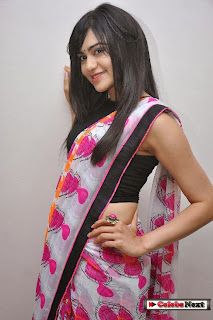 Actress Adah Sharma Pictures in Saree at Heart Attack Movie Audio Success Meet  0030.jpg