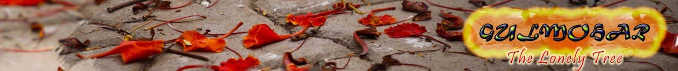 ഗുല്മോഹര് ( gulmohar )