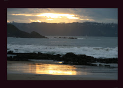 El mar les había conducido a aquella costa.