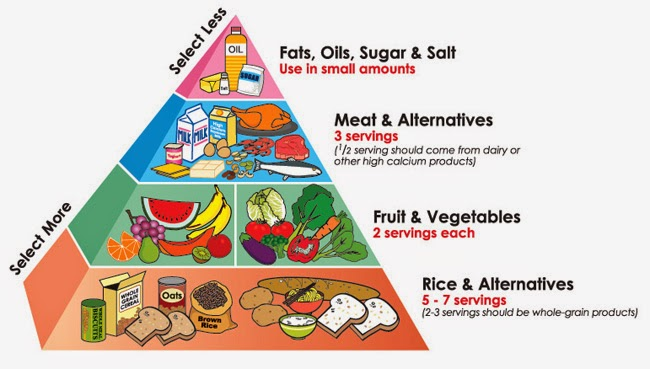 Worksheets Food Pyramid Guide health tips for today food guide pyramid natural pyramid
