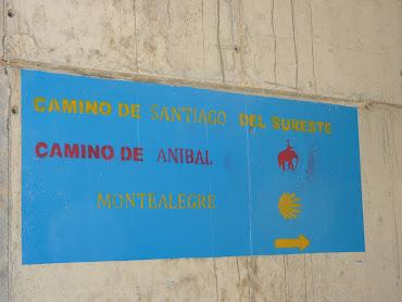 SEÑALIZACIÓN DE LOS CAMINOS DE SANTIAGO EN CAUDETE: CAMINO DEL SURESTE Y CAMINO DE LA LANA