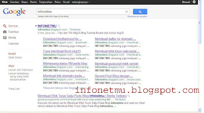 sitelink google