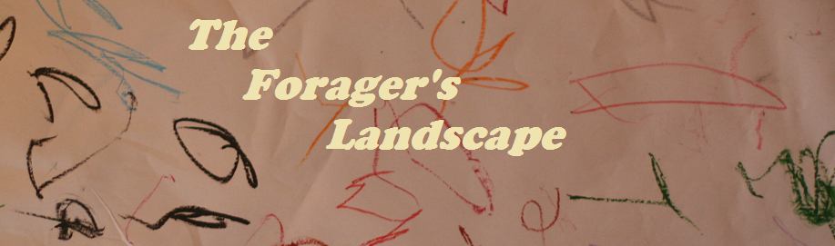 The Forager's Landscape