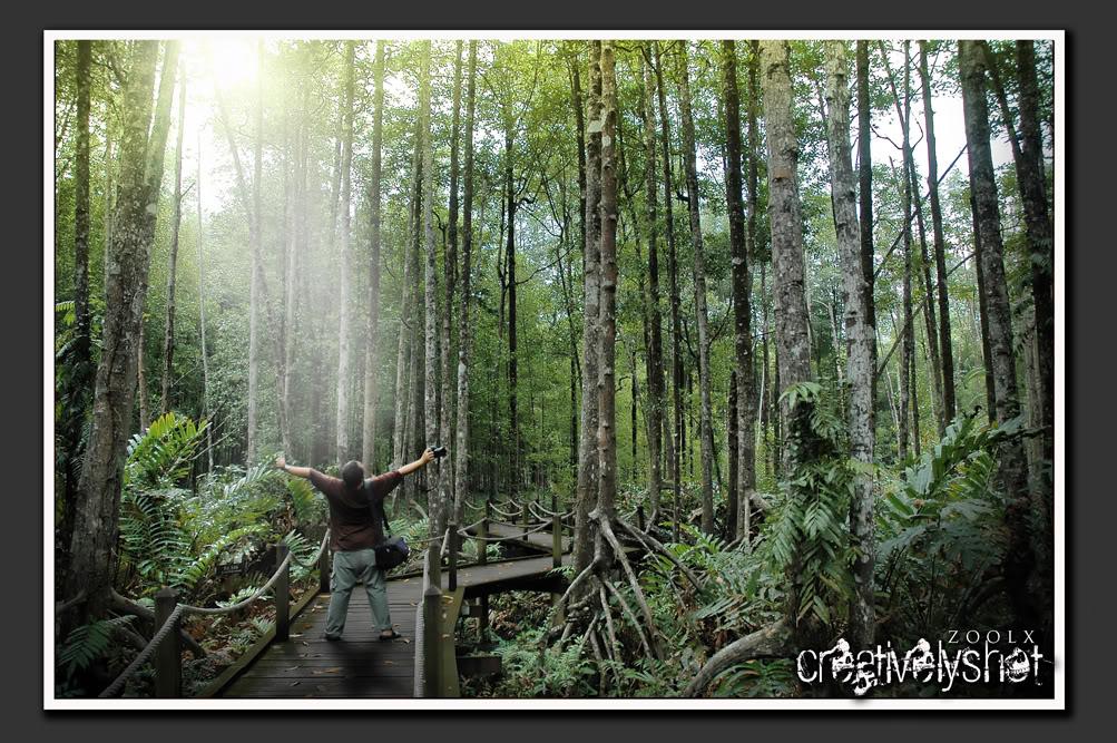 Skk perisalah hutan 2 skk pengukuran dan pemetaan hutan 3 skk