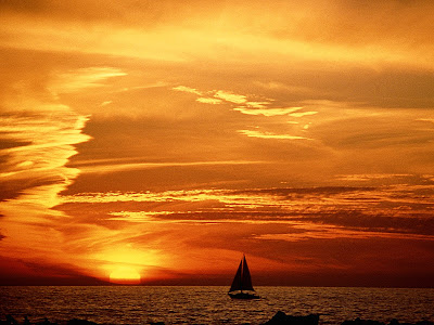 Sunset In Venice Beach, California