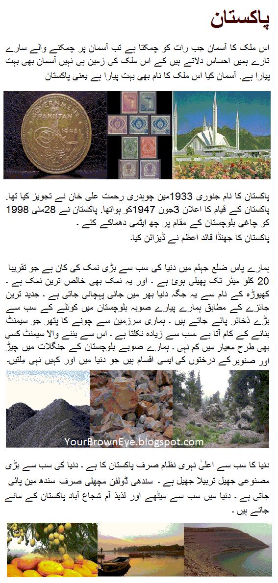 Essay on corruption in pakistan in urdu language