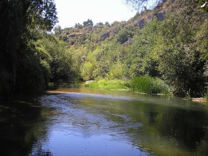 Beira rio perto do Agroal - Tomar