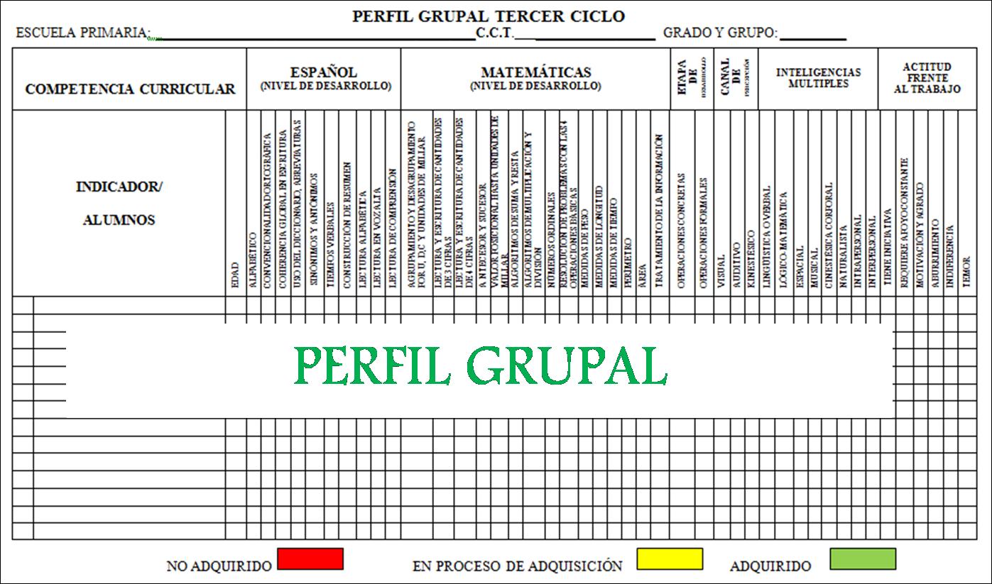Perfil Grupal