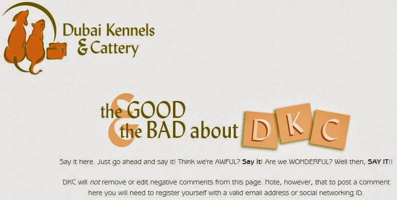 The Good And The Bad About DKC
