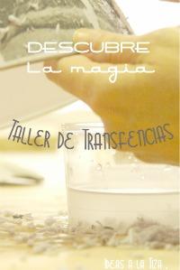 TALLER TRANSFERENCIAS