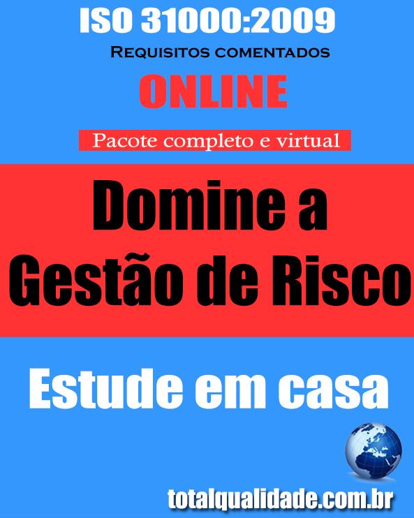 ISO 31000 comentada