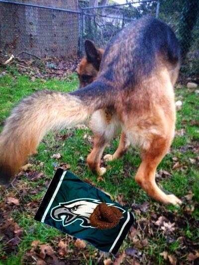 shitting dog on eagles - #eagleshaters #shittingdog