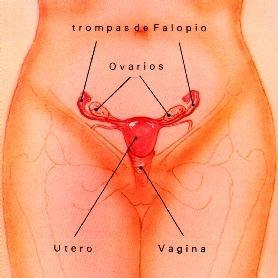 Periodo de Menstruaciòn.