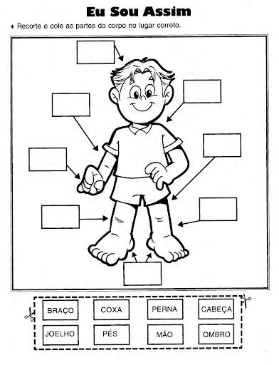 Atividades Sobre Corpo Humano Para A Educa    O Infantil