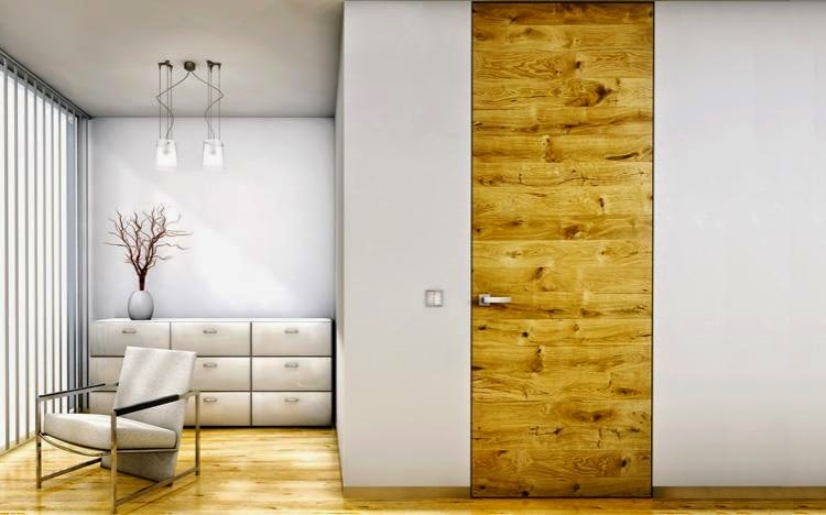 elegant modern interior doors made of wood and glass