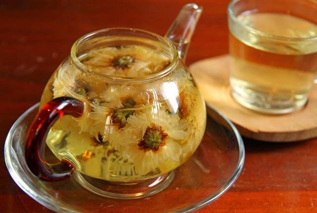 Image result for trà hoa cúc