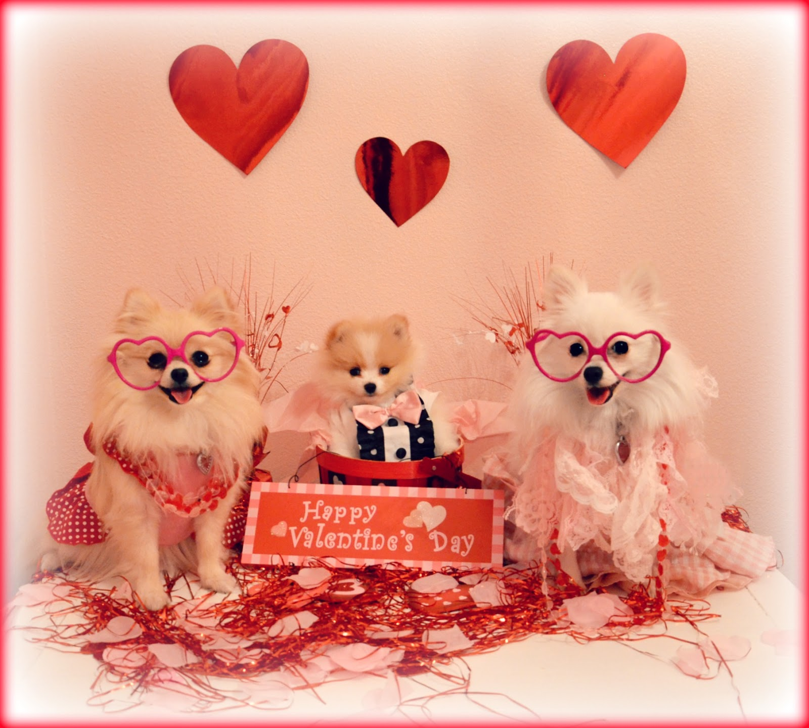 Happy Valentineu0027s Day. Hope Everyone Has A Happy Holiday Filled With Lots  Of Love.