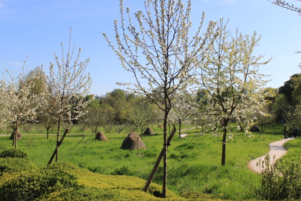 Arboretum de la Vallée aux Loups
