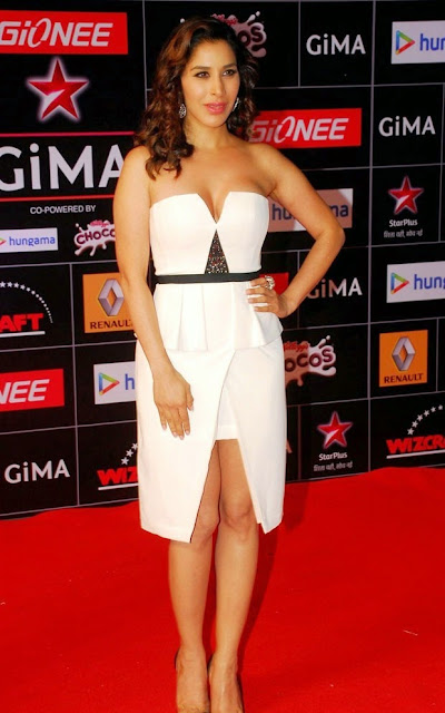 Celebrities at GIMA Awards 2015 Pictures 3.jpg