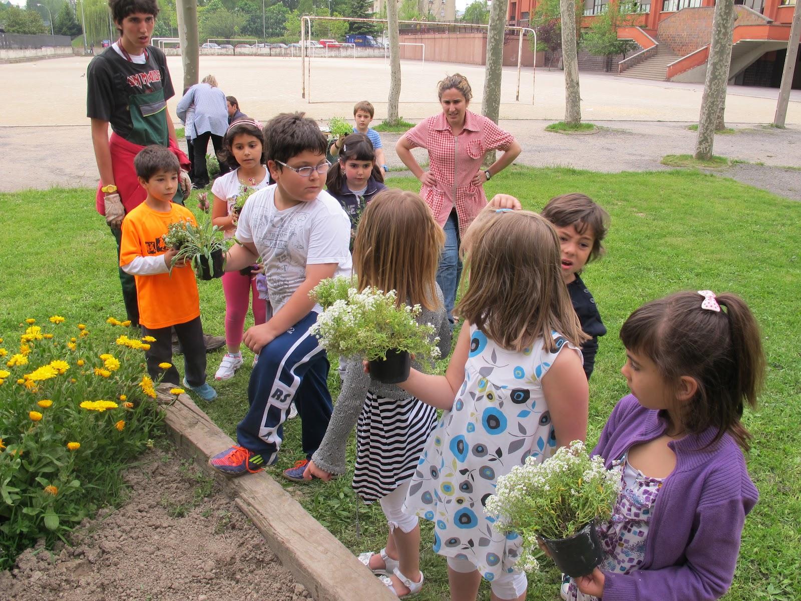 Aat escolapios gasteiz taller de jardiner a para ni os - Como aprender jardineria ...