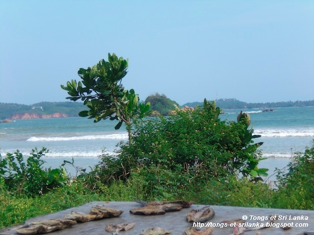 Weligama au Sri Lanka