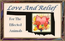 Join in the Fundraising Relief Effort to Help the Pets From the Oklahoma Tornadoes