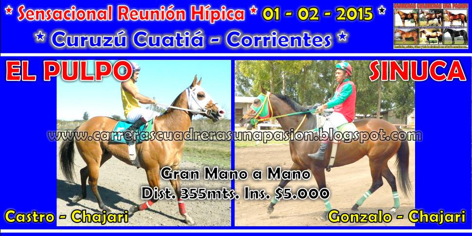 C. CUATIA - CLASICO 355