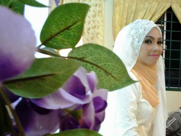 Raikan Cinta : Liyana dan Tajul