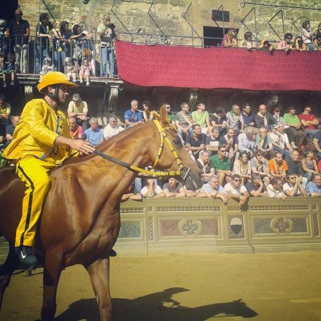 Jockey and horse of the Aquila neighborhood before a trial race