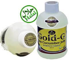 Cara Pemesanan Gold-G