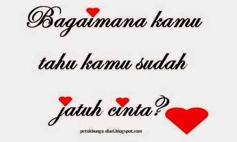Bagaimana Aku Tahu Aku Sudah Jatuh Cinta?