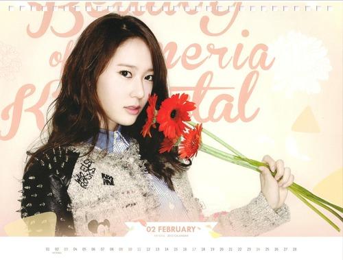 Krystal f(x) 2013 Photo Calendar