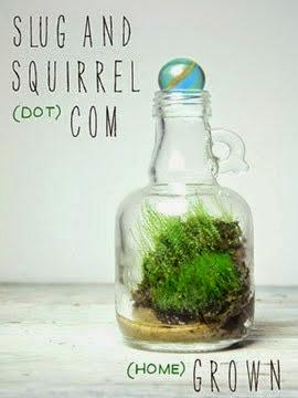 http://slugandsquirrel.blogspot.com/