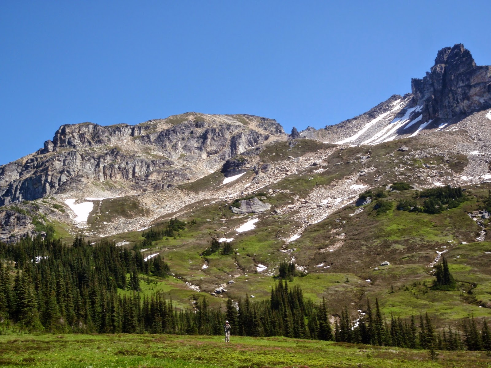 Side trip to another meadow of wildflowers and great views of the mountains around us. @ Glacier Peak Wilderness